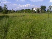 В Нижнем Тагиле подорожали земельные участки