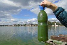 «Результаты великолепные»: Пинаев доволен экспериментальной установкой по очистке воды