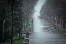 Холодно и дождливо на Урале будет всю неделю