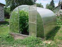 СМИ: садоводов заставляют регистрировать теплицы как недвижимость и платить с нее налоги