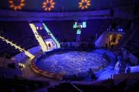 Завтра состоится открытие Нижнетагильского цирка после грандиозной реконструкции. Артисты - на генеральном прогоне, строители – завершают недоделки (фотоотчет)
