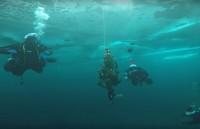 Под Нижним Тагилом дайверы спустили под воду ёлку и станцевали вокруг неё хоровод (видео)