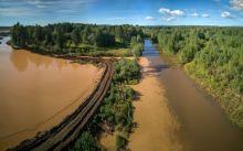 В реку Тагил сбрасывают коричневую воду. А городской пруд «позеленел» вслед на Черноисточинским (фото)