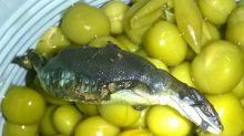 Консервы с сюрпризом: в Нижнем Тагиле женщина нашла ящерицу в банке с зеленым горошком (фото)