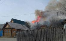 В Черноисточинске загорелся лес из-за поджога детьми сухой травы (фото, видео)