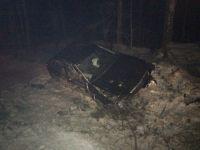 На Серовской трассе водитель, вылетев с трассы, снёс дерево (фото)