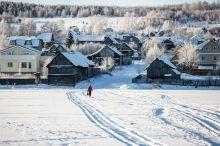 30 горнолыжных трасс, развлекательный парк Горнозаводской цивилизации, 20 отелей и 1,5 млн туристов ежегодно: во что должен превратиться пригород Нижнего Тагила вокруг горы Белая