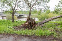 13 июня возможен ураган, предупреждают синоптики