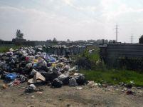 Зловоние и мухи – в селе Покровское два месяца не вывозят мусор (фото)