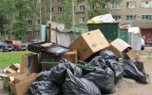 От 130 до 160 рублей с человека: с нового года в Нижнем Тагиле вводится «подушевая» оплата за вывоз мусора