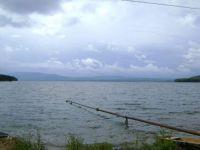 Девочка-подросток утонула в Черноисточинском пруду