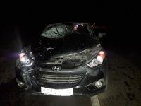 На Серовском тракте насмерть сбили пешехода, который шел прямо по дороге (видео)