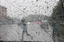 Ливень, гроза и шквалистый ветер. Экстренное предупреждение поступило в Нижний Тагил