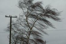 Свердловские синоптики вновь объявили штормовое предупреждение: ветер до 25 м/с поднимется в Нижнем Тагиле