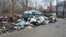 Тагильские общественники объявили сбор подписей под обращением к Путину за снижение тарифов по вывозу мусора. Областной министр заявил, что «тариф не подлежит общественному обсуждению»
