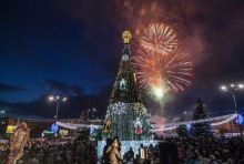 Главную новогоднюю ель установят на следующей неделе