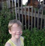 Мальчика из Нижнего Тагила насмерть придавило деревянной скульптурой в туристическом комплексе в Ленинградской области