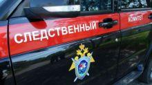 Следственный комитет ищет источник утечки документов полиции по делу о гибели Станислава Головко