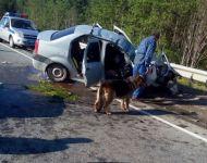Renault Logan влетел в стоящий на обочине КамАЗ. Стали известны подробности ДТП у Евстюнихи (фото)