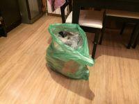 «Нужно доказать, что мусор в квартире был и услуга по вывозу оказана». Эксперт рассказал о «мусорном» законе