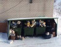 Мусорная реформа дала осечку в первые же дни. В Нижнем Тагиле контейнерные площадки превратились в свалки (фото)