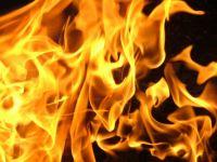 Иномарка сгорела на трассе под Нижним Тагилом