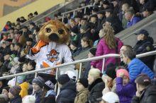 «Пришли одни отписки». Фанаты ХК «Спутник» разочарованы ответами администраций президента и губернатора