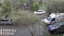 В Нижнем Тагиле автомобиль придавило упавшим от штормового ветра деревом (фото)
