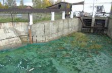 Включение в программу «Чистая вода» не спасёт Нижний Тагил от экологической катастрофы. «Она не финансируется с 2013 года»