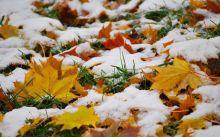 Утепляемся: на этой неделе на Урале будет морозно и снежно