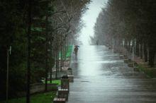 Тепла больше не будет: на Урал надвигается циклон с похолоданием и дождями