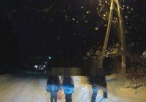 В Нижнем Тагиле директор школы совершил наезд на ребёнка и скрылся с места ДТП (видео)