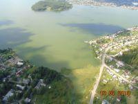 Черноисточинский пруд, который снабжает питьевой водой жителей Гальянки и Вагонки, снова «зацвёл» (фото)
