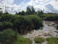 Коммунальщики из Николо-Павловского сбрасывали канализационные стоки в реки Тагил и Шайтанка (фото)